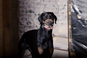 werewolf-muzzle-dog